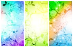 Floral banner set. Multicolored floral banner set over white background Royalty Free Stock Photos