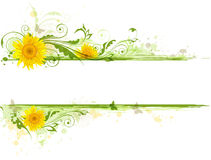 Floral banner with sunflowers Royalty Free Stock Photography