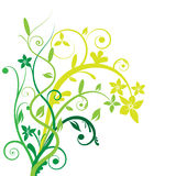 Floral banner vector. The green floral banner vector Stock Images