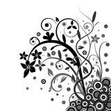 Floral banner vector. Black and white floral banner vector Stock Photography
