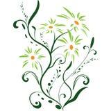Floral banner vector Stock Photos