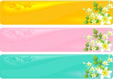 Floral banners. A set of three floral different colored banners Royalty Free Stock Photography