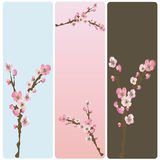 Floral banners. Set of floral web banners Royalty Free Stock Photo