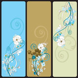 Floral banners. Set of floral web banners Stock Image