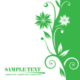 Floral banners. Abstract background, beautiful vector illustration Stock Photos