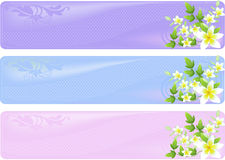 Floral banners. A set of three floral different colored banners Royalty Free Stock Images