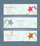 Floral banners Royalty Free Stock Photo