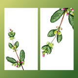 Floral banners. With blossom branches Royalty Free Stock Photos