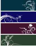 Floral banners choice. Vector illustration of four floral banners in four different colours on white background Stock Photo