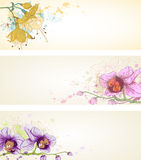 Floral banners with orchids Stock Image