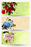 Floral banners. Three colored abstract floral banners Stock Photos