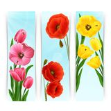 Floral Banners Vertical Royalty Free Stock Images