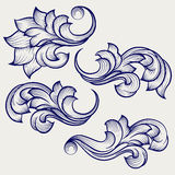 Floral baroque engraving elements. Hand drawn floral baroque engraving elements on grey backdrop. ector illustration Stock Photos