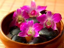 Floral bath. With with purple orchids in wooden bowl Stock Images