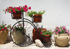 Floral bike Stock Image