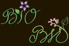 Floral bio symbol Royalty Free Stock Photos