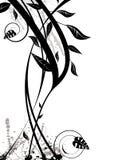 Floral black modern Royalty Free Stock Images