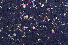 Floral black tea Royalty Free Stock Images