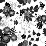Floral black and white abstract seamless background. Royalty Free Stock Images