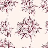 Floral blooming lilies background hand drawn vector illustration  sketch Stock Photos