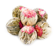 Floral blooming  tea balls  Stock Photos