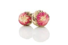 Floral blooming tea balls Royalty Free Stock Photos
