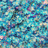 Floral Blossom Background. Forget me nots Flowers Royalty Free Stock Photo