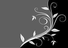 Floral blue. A floral design in black and white on both sides Royalty Free Stock Photos