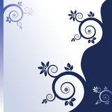 Floral Blue & White Background Royalty Free Stock Image