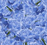 Floral  blue-white beautiful background.  Flower composition. Bouquet of flowers from  light  blue roses. Close-up. Nature Royalty Free Stock Photography