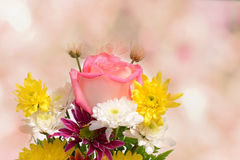 Floral bokeh in the background Stock Photo