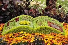 Floral book Stock Photos
