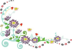 Floral border. Floral curly border from asters, flowers Royalty Free Stock Images