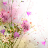 Floral border, beautiful blurred background stock photography