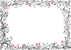 Floral border. Royalty Free Stock Photography