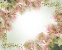 Floral Border bougainvillea Invitation Stock Photography