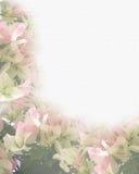 Floral Border bougainvillea watercolor Royalty Free Stock Photo
