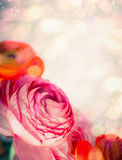 Floral border with close up of red pink flowers and bokeh background. Festive greeting Royalty Free Stock Photography