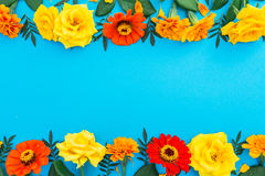 Floral border frame of yellow and red flowers on blue background. Flat lay, top view. Floral background. Floral border frame of yellow and red flowers on blue Royalty Free Stock Image