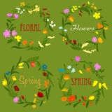 Floral border frames with wildflowers and herbs Stock Photos