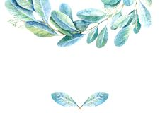 Floral border .Garland of a eucalyptus branches.Frame of a herbs.Watercolor royalty free illustration