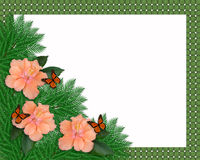 Floral border Hibiscus and butterflies stock photos