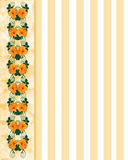 Floral Border hibiscus with stripes Stock Photography
