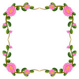 A floral border with pink flowers Royalty Free Stock Photo