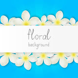 Floral border with place for text Royalty Free Stock Photos