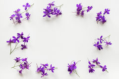 Floral border of purple summer flowers with copy space. Stock Photo