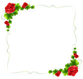 A floral border with red roses Stock Photo