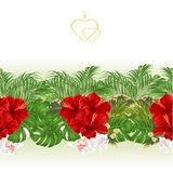Floral border seamless background with blooming hibiscus and orchid and tropical leaves vector Illustration for use in interior de. Sign, artwork, dishes Royalty Free Stock Photography