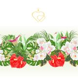 Floral border seamless background bouquet with tropical flowers floral arrangement, with beautiful white orchids ,lili, palm,phil stock illustration