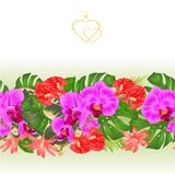 Floral border seamless background bouquet with tropical flowers Hawaiian style floral arrangement, with beautiful purple orchid, p vector illustration
